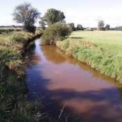 Wasser und weite Landschaft